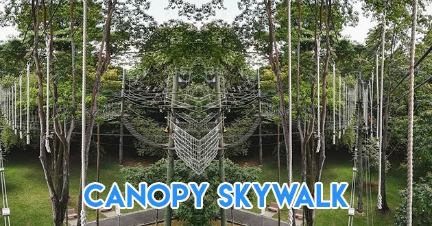 canopy skywalk at yishun safra
