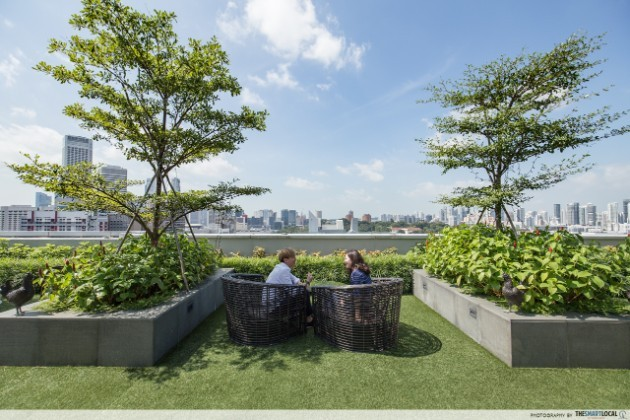 Talking at the rooftop garden