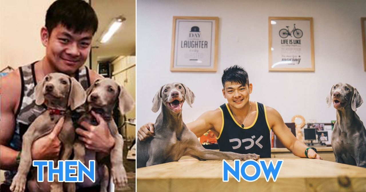 5 Singaporean Dog Owners Recreated First Photos With Their Pups From Up To 9 Years Ago