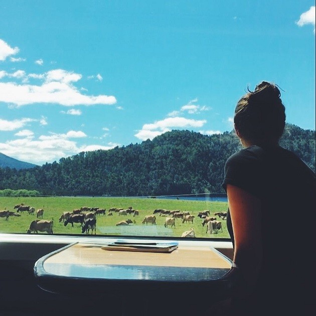 The view of stunning landscapes from the Trans Alpine Train