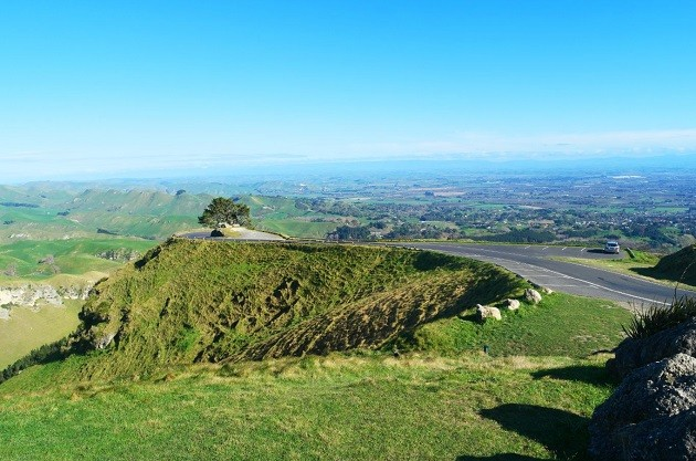 The lush greenery of Te Mata Peak