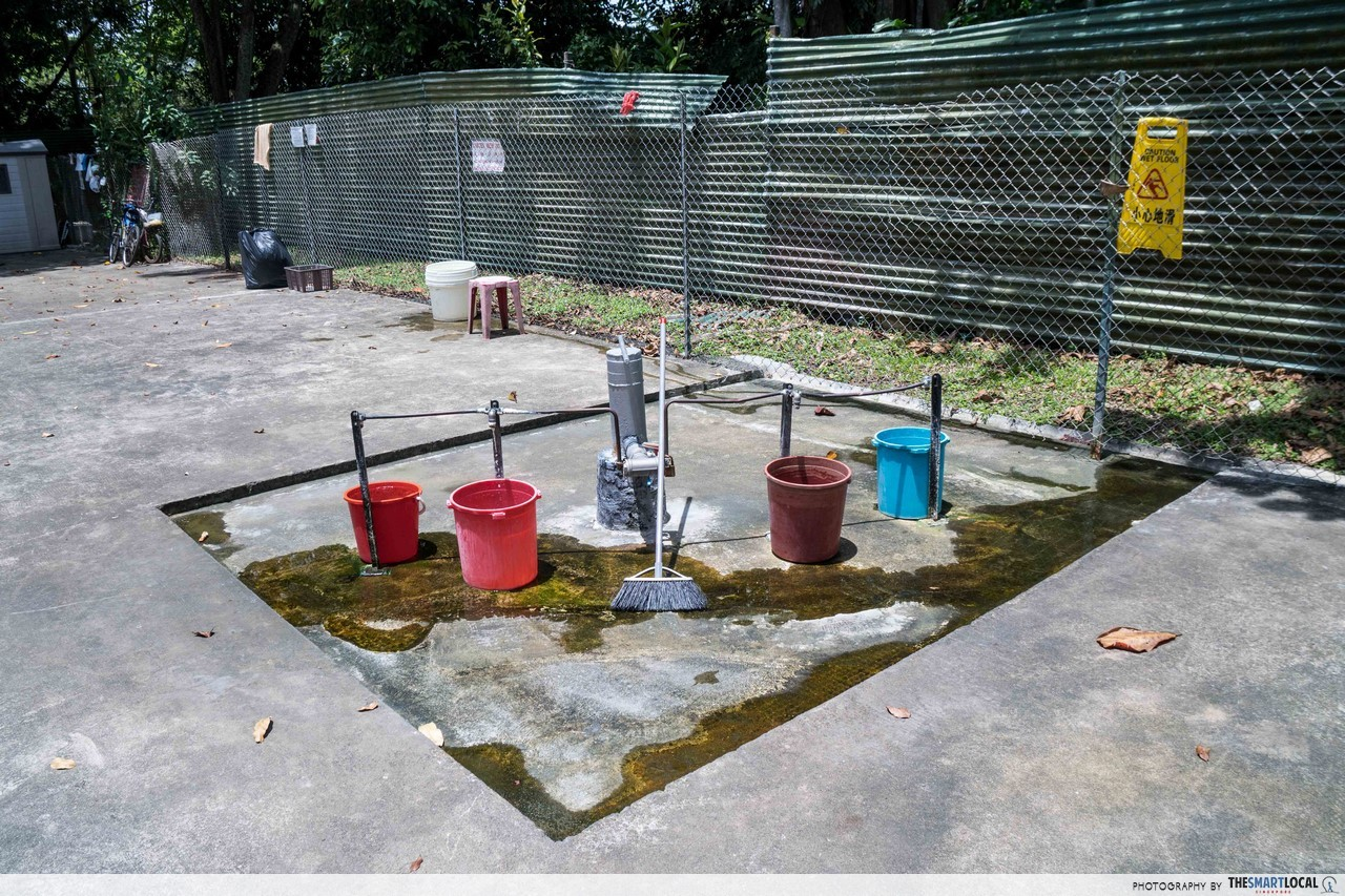 Sembawang Hot Spring - water point