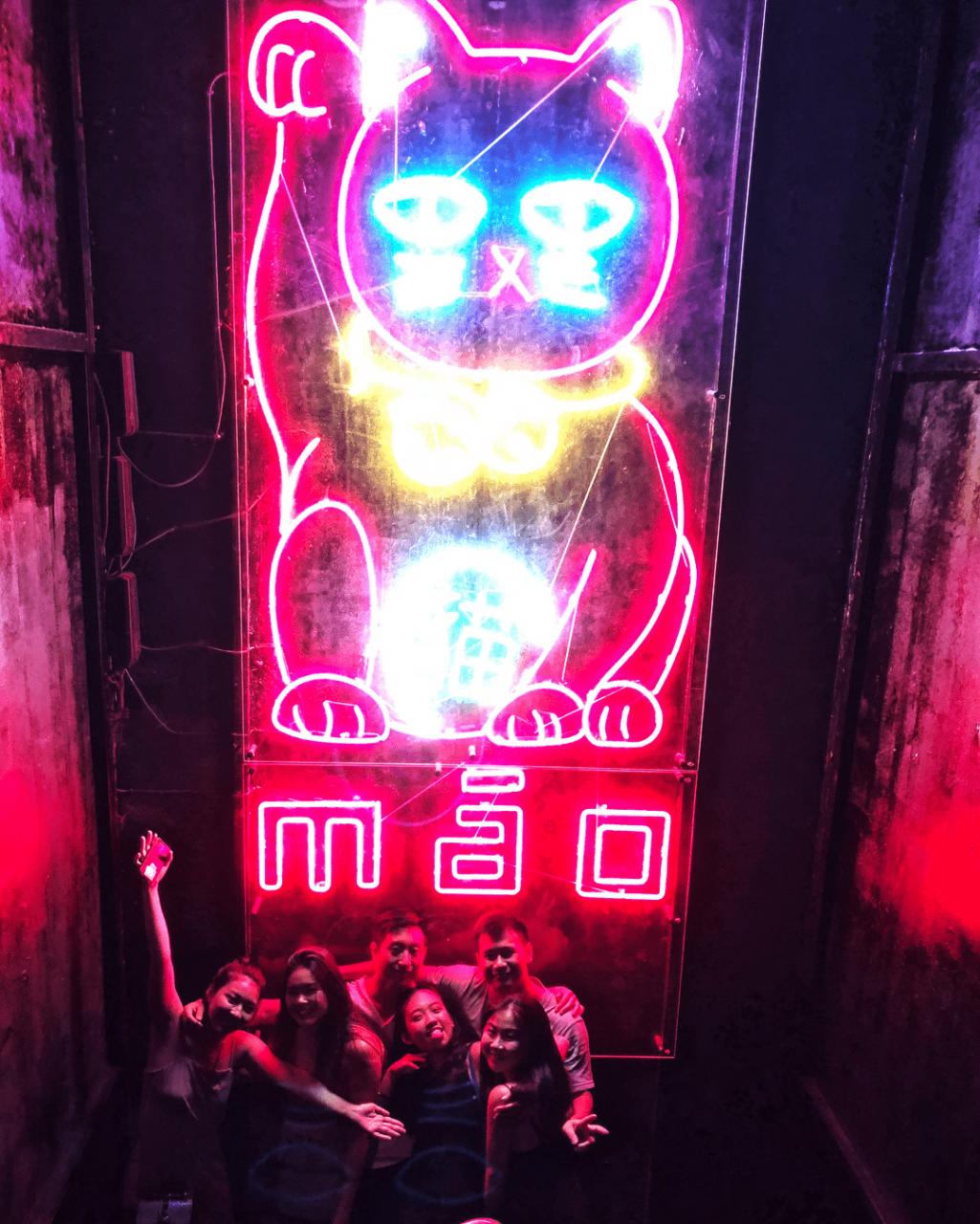 MAO-neon-cat