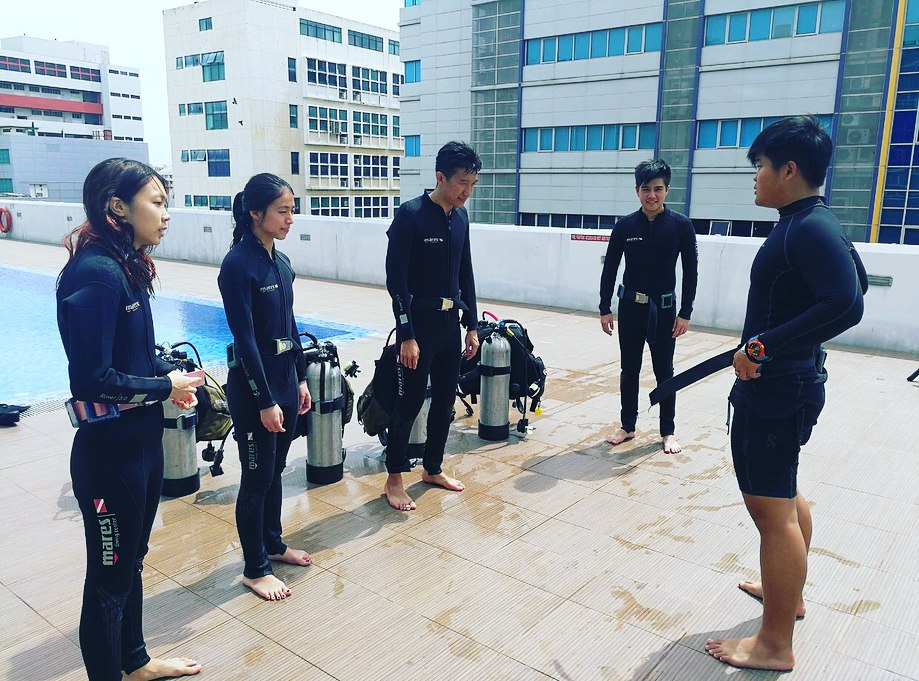 learning diving singapore sunny cove open water diver course
