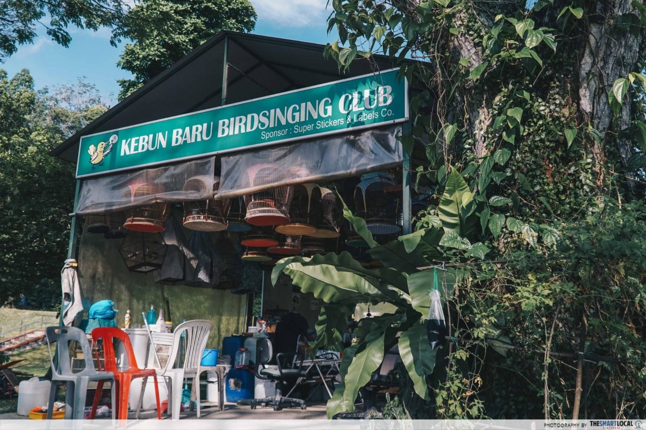 singapore birdsinging club