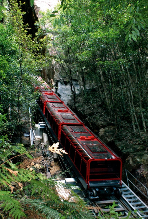 Taking the Scenic Railway through Scenic World