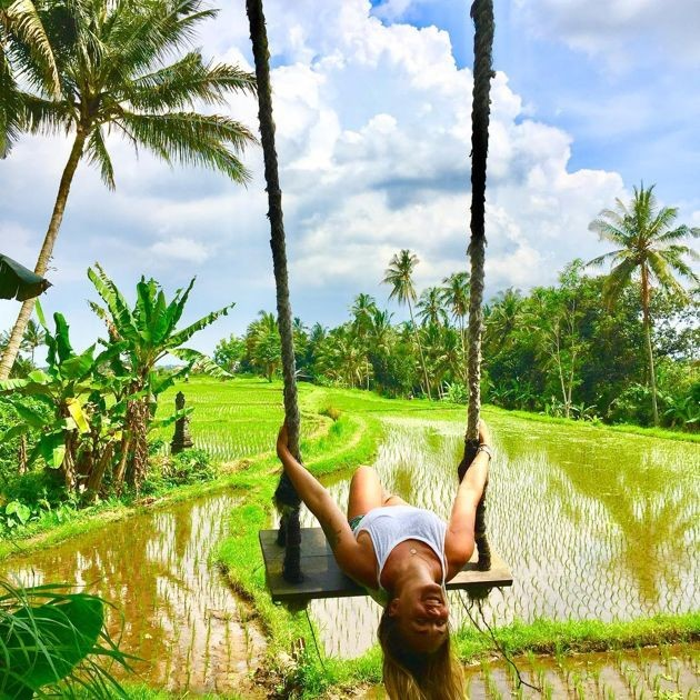 Swing over paddyfields at firefly eco lodge