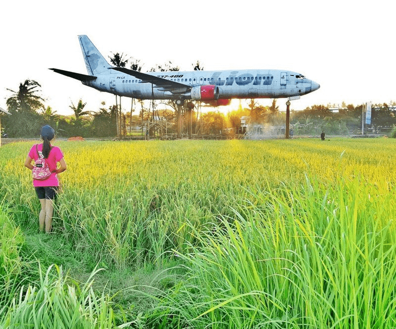 Keramas Aero Park - rice fields