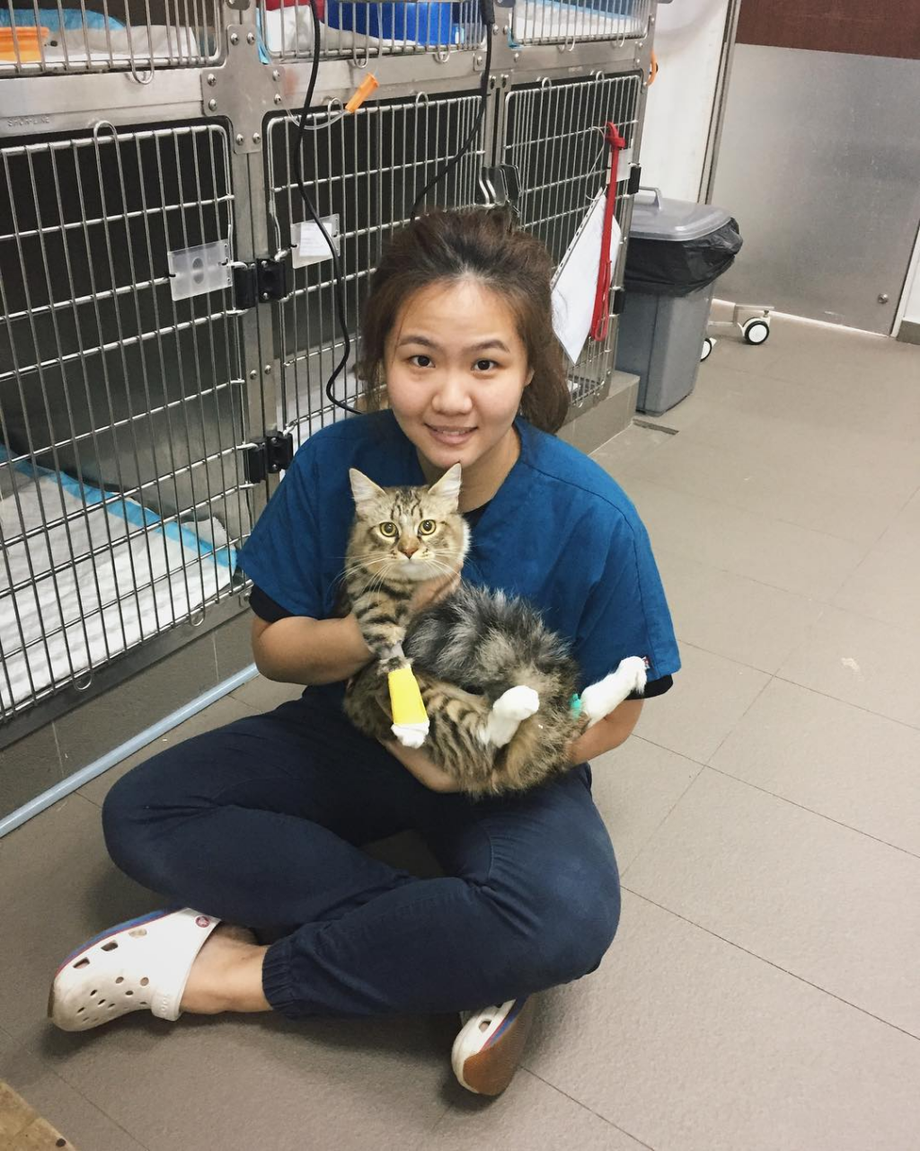 11 24-Hour Vets In Singapore Sorted By Location To Bookmark