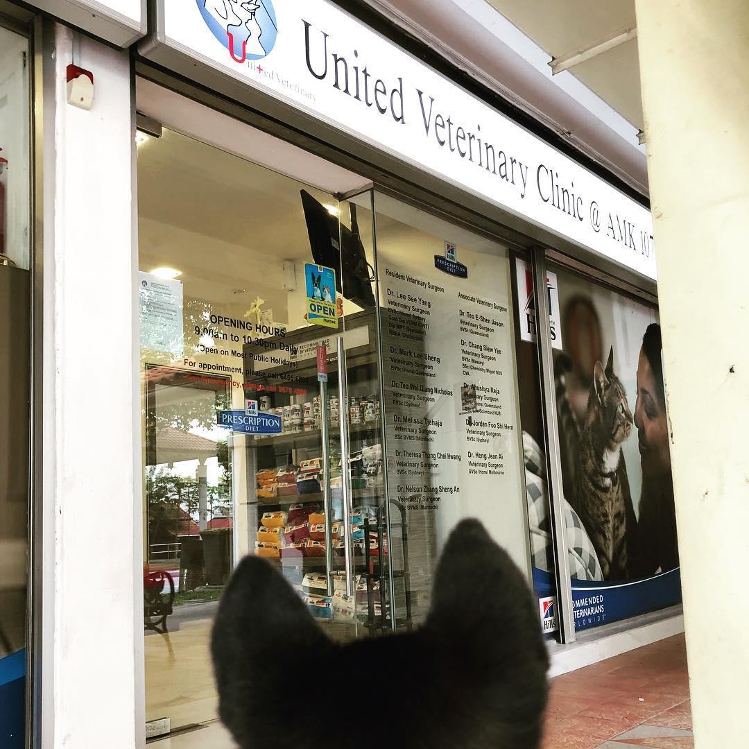 United Veterinary Clinic Pte Ltd