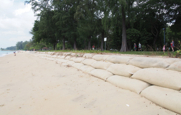 ways to prevent soil erosion in singapore