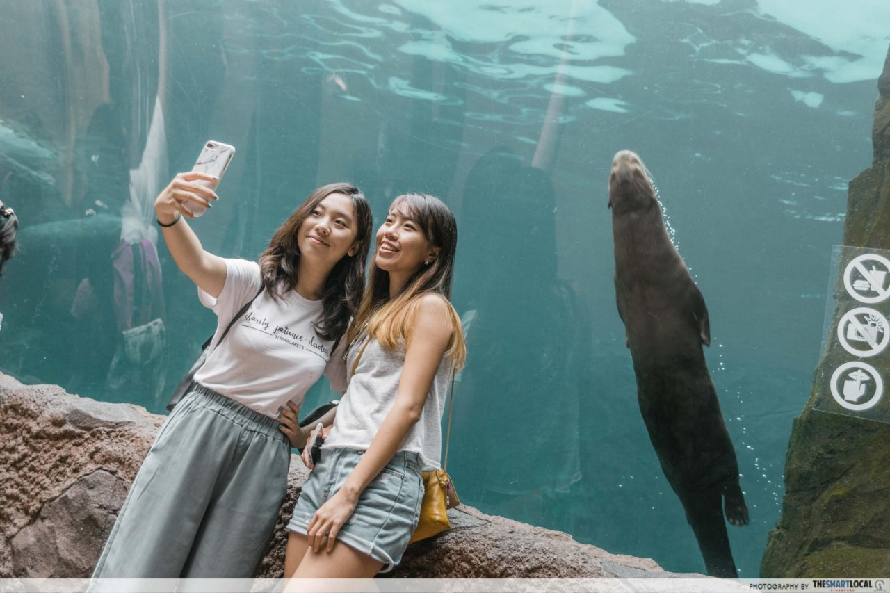 Selfie with giant river otters river safari