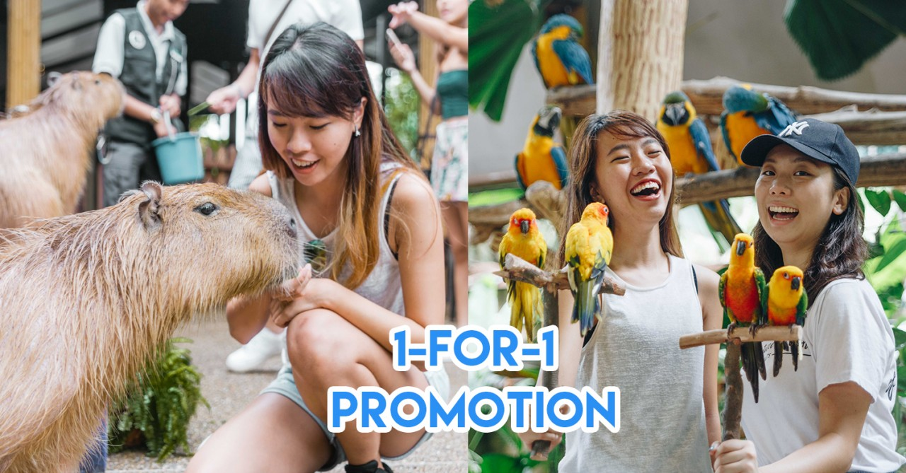 Singapore Zoo, River Safari, and Jurong Bird Park Have 1-for-1 Offers To Jio Your Potential Date Or BFF Out