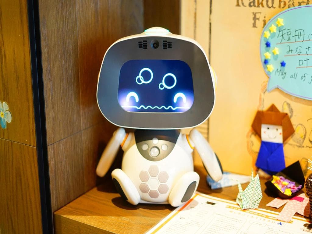 personal room robot