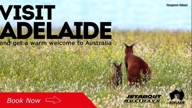 Jetabout Holidays - Visit Adelaide road trip
