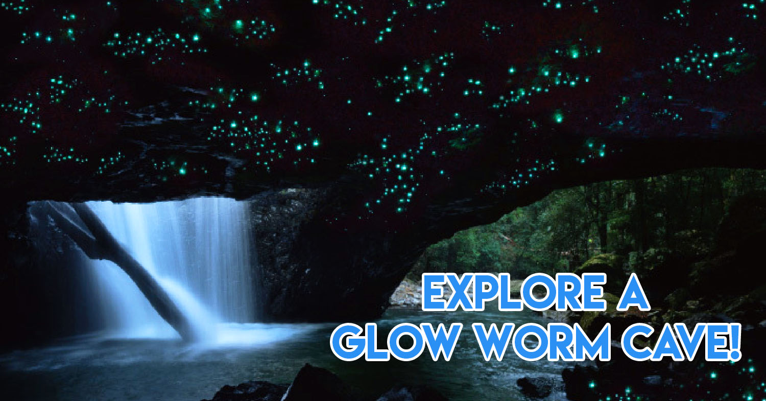 These Fully-Planned Queensland Trips Bring You To Explore Nature's Hotspots -  Glow Worm Cave & Tully Gorge
