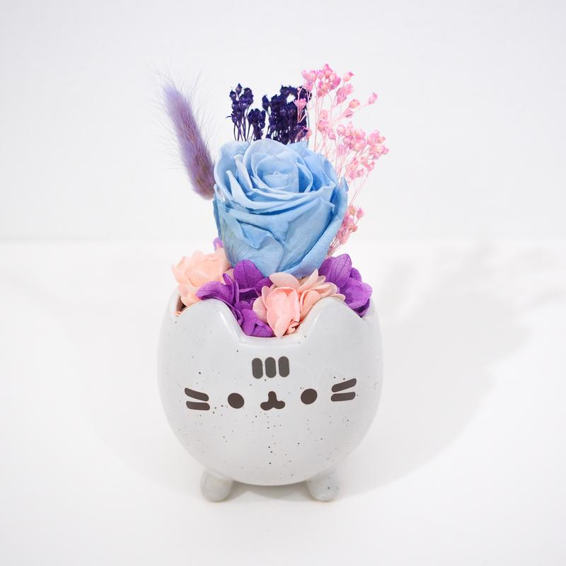 pusheen pot of joy