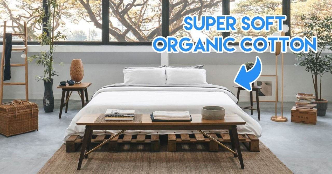 SOJAO Was Started By An Executive Who Left Her Banking Job To Create Bedsheets From Sustainable Organic Cotton