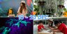IMM Is Breaking The Cliche This Christmas With A Scorpion Cave, Butterfly Aviary & Parrot Shows