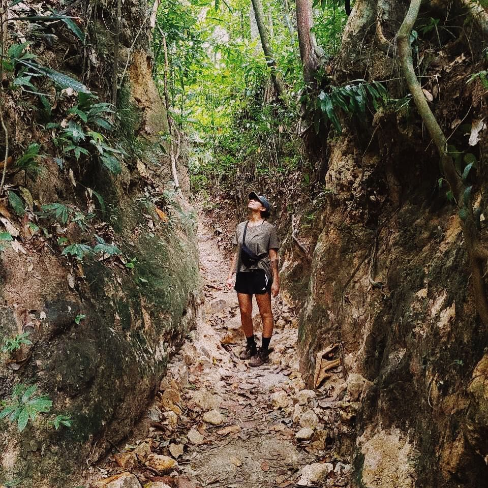 Penang National Park Hiking Trail