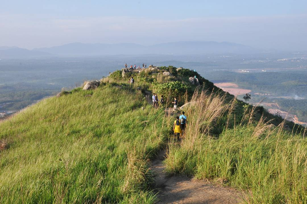 Grassy peak of Broga Hill