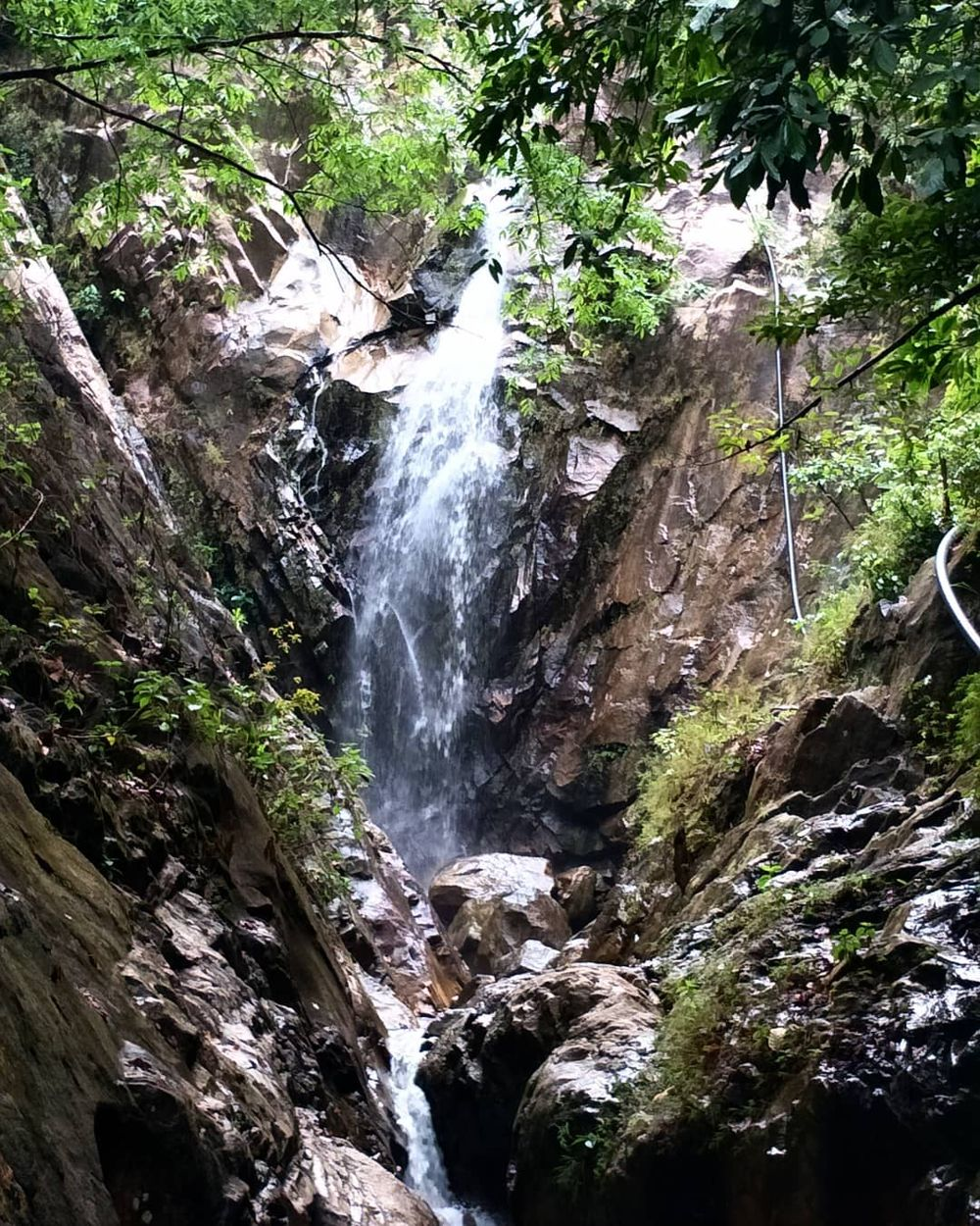 Waterfall along the trail of Mount Pulai