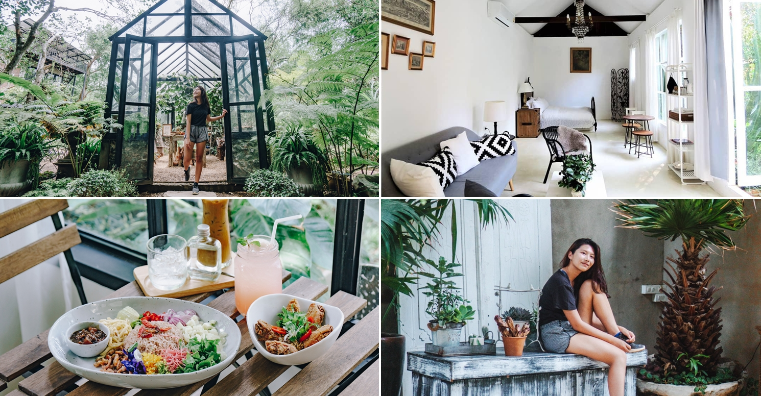 The Ironwood: Hidden Garden Cafe In Chiang Mai With A Greenhouse, Photo Spots & Accommodation