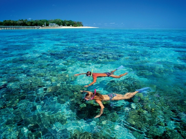 b2ap3_thumbnail_Great-Barrier-Reef-Travel-Diving-Snorkeling-World-Natural-Heritage-Australia1-1920x2560.jpg