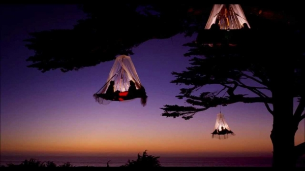 b2ap3_thumbnail_tree-camping.jpg