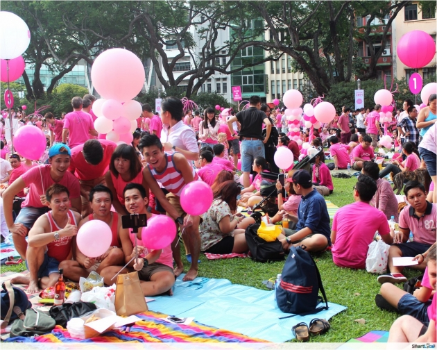 Pink Dot 2014 Recap - The Power of Pink
