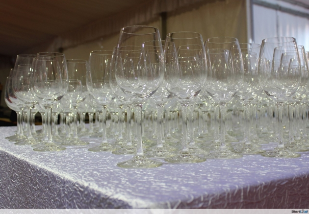 World of Wines 2014 Festival Recap