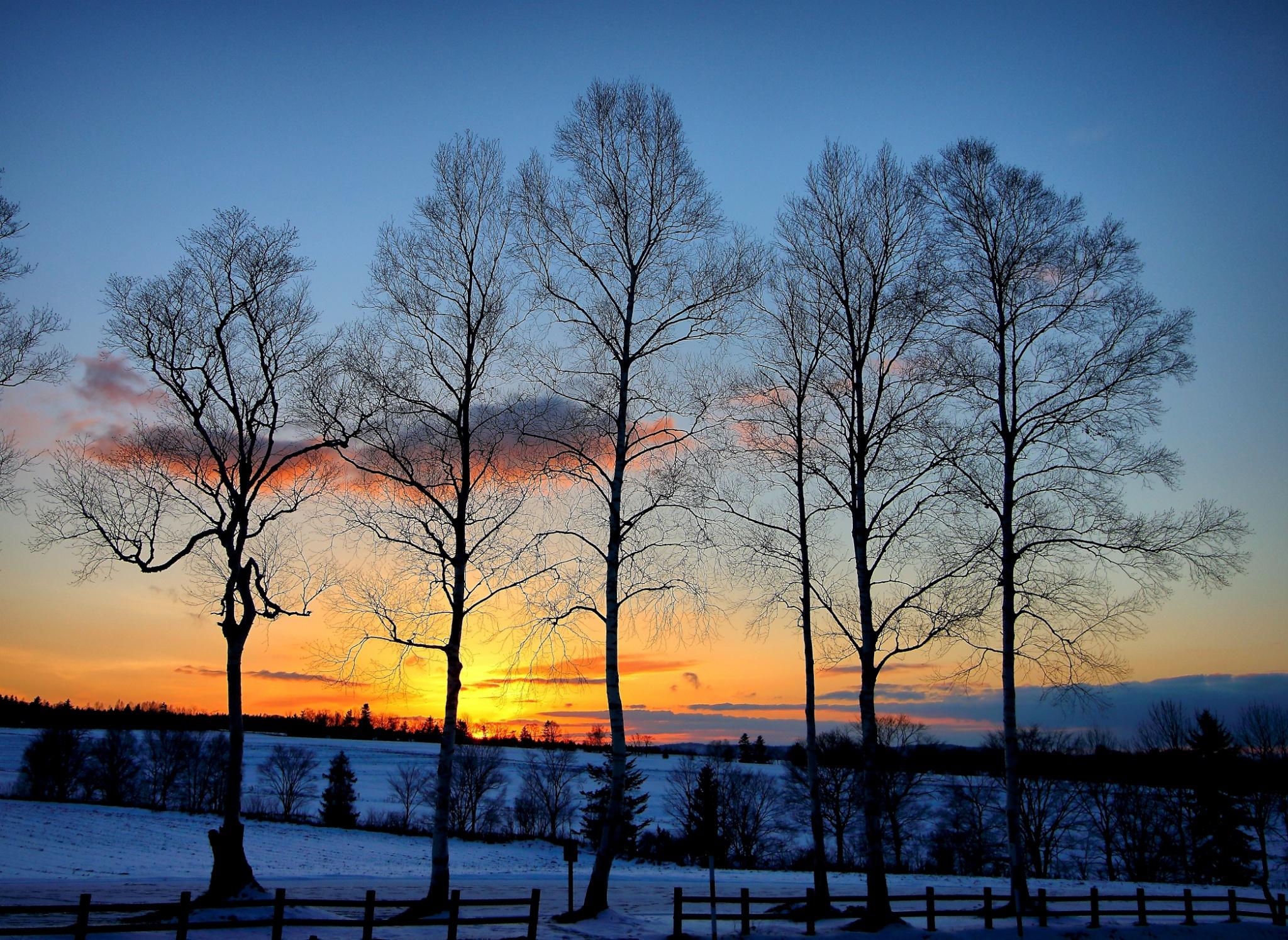 Hokkaido, Japan - A Photojournal And Story Of Raw Natural Beauty