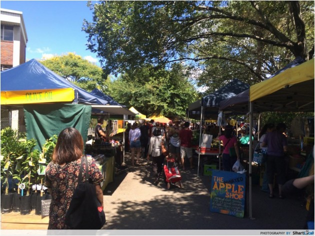 15 Fun and FREE Things To Do In Brisbane