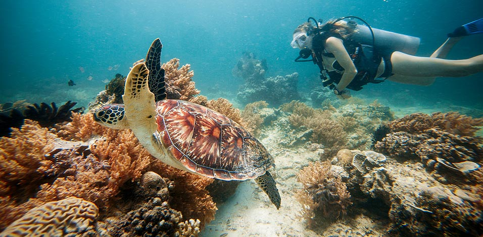 10 Reasons To Visit The Secret Island Of Gili Trawangan