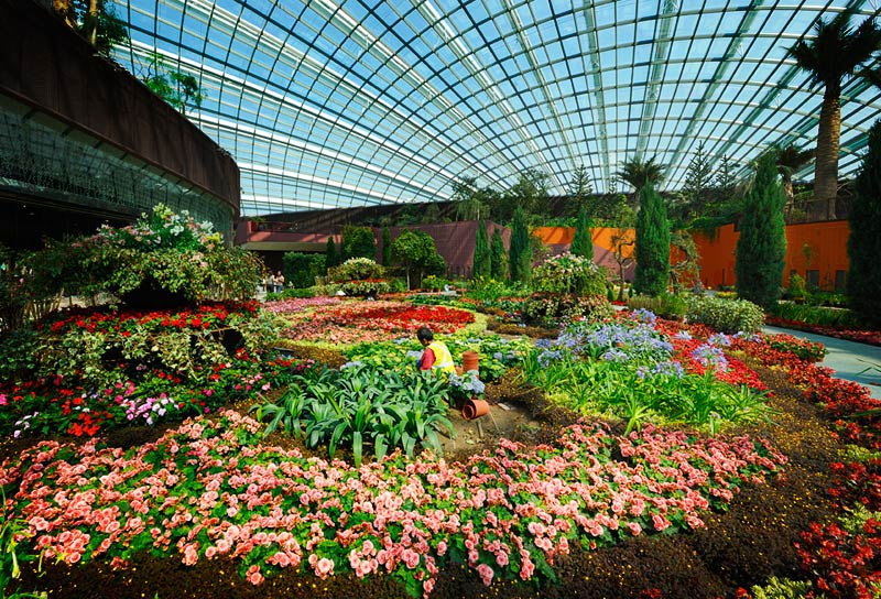 Garden By The Bay Admission gardenthe bay singapore admission fee - page 3 - garden.xcyyxh