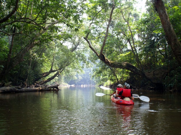 Things To Do In Sarawak
