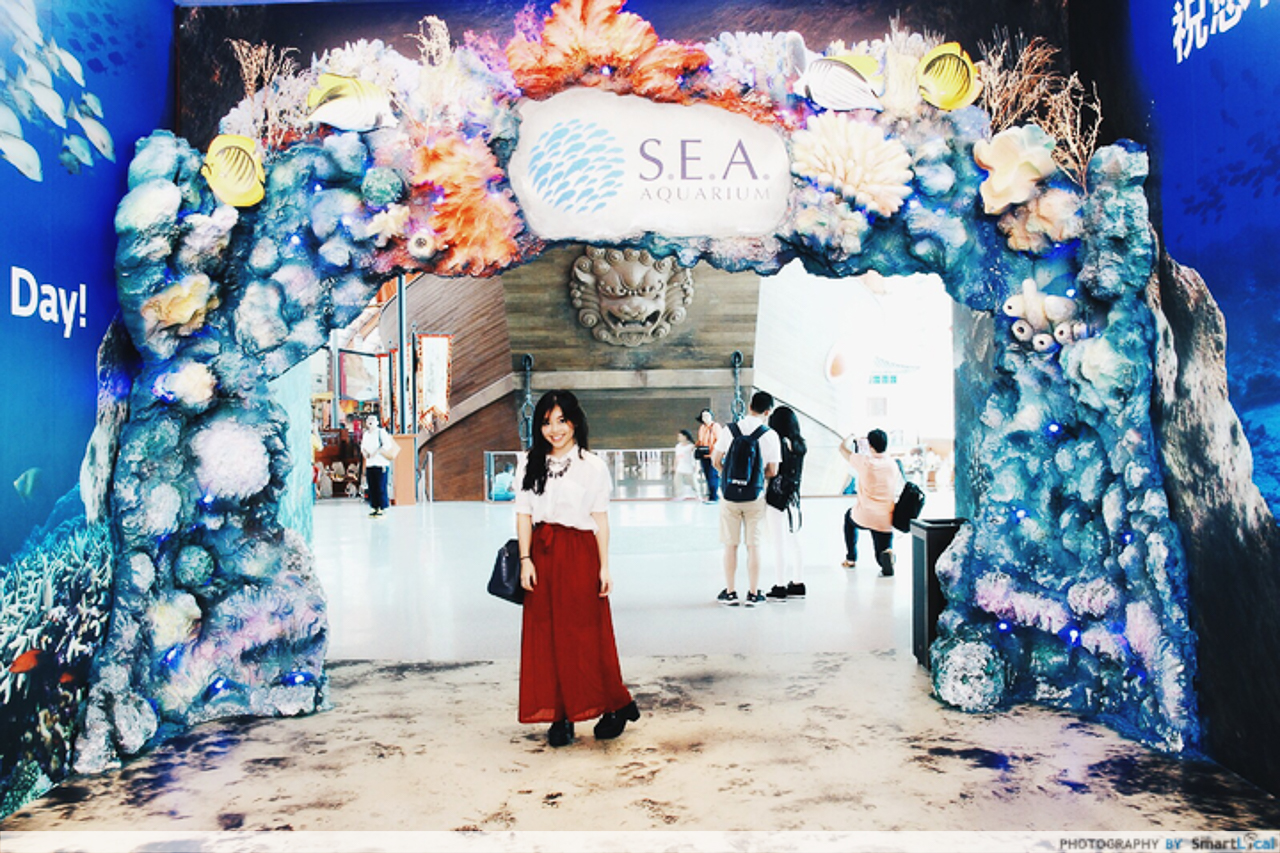 10 Must-Visits At The S.E.A. Aquarium - A Guide To The World Under the SEA
