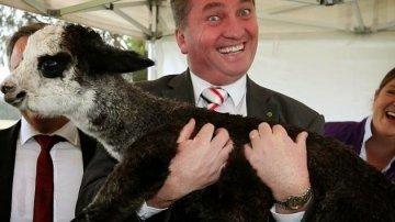 12 Times Politics Perfectly Summed Up Australia