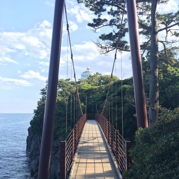 walk across a suspension bridge