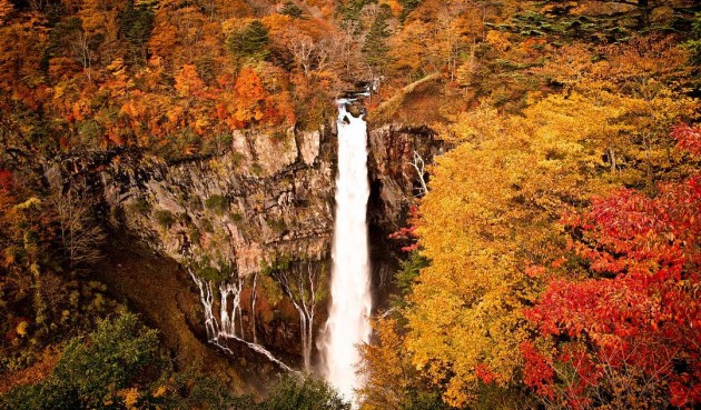 kegon falls during autumn