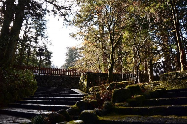 enjoy the greenery at nikko