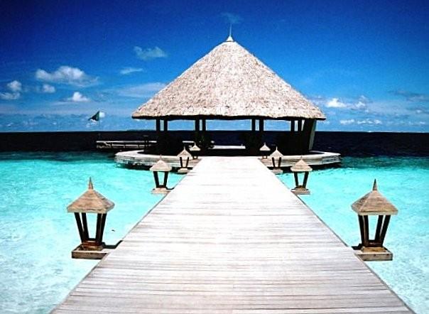 Angsana Tree Ihuru Maldives...Paradise found...
