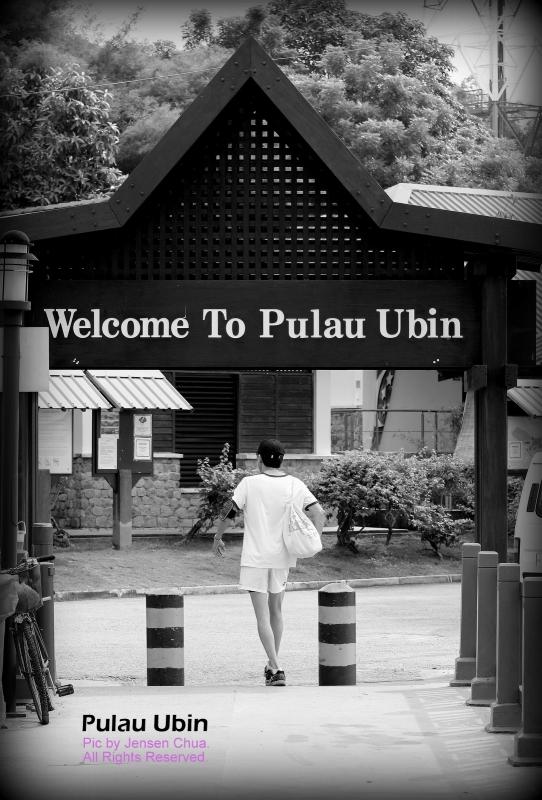 Pulau Ubin Photo Journal Adventure