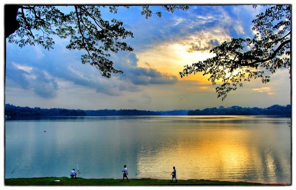 Scenic Upper Seletar Reservoir