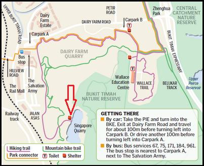 Dairy Farm Nature Reserve - Quarry Trail