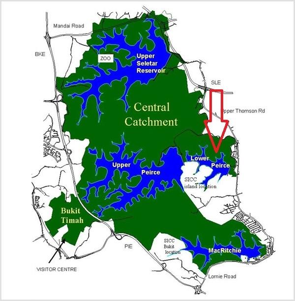 Lower Peirce Reservoir Photo Journal