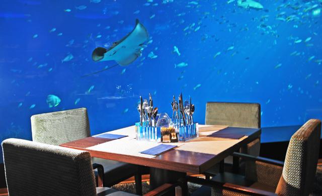 Ocean Jewel Seafood Restaurant