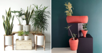 8 Plant Shops In Indonesia With Online Delivery That Will Turn Your Home Into A Cozy Private Garden