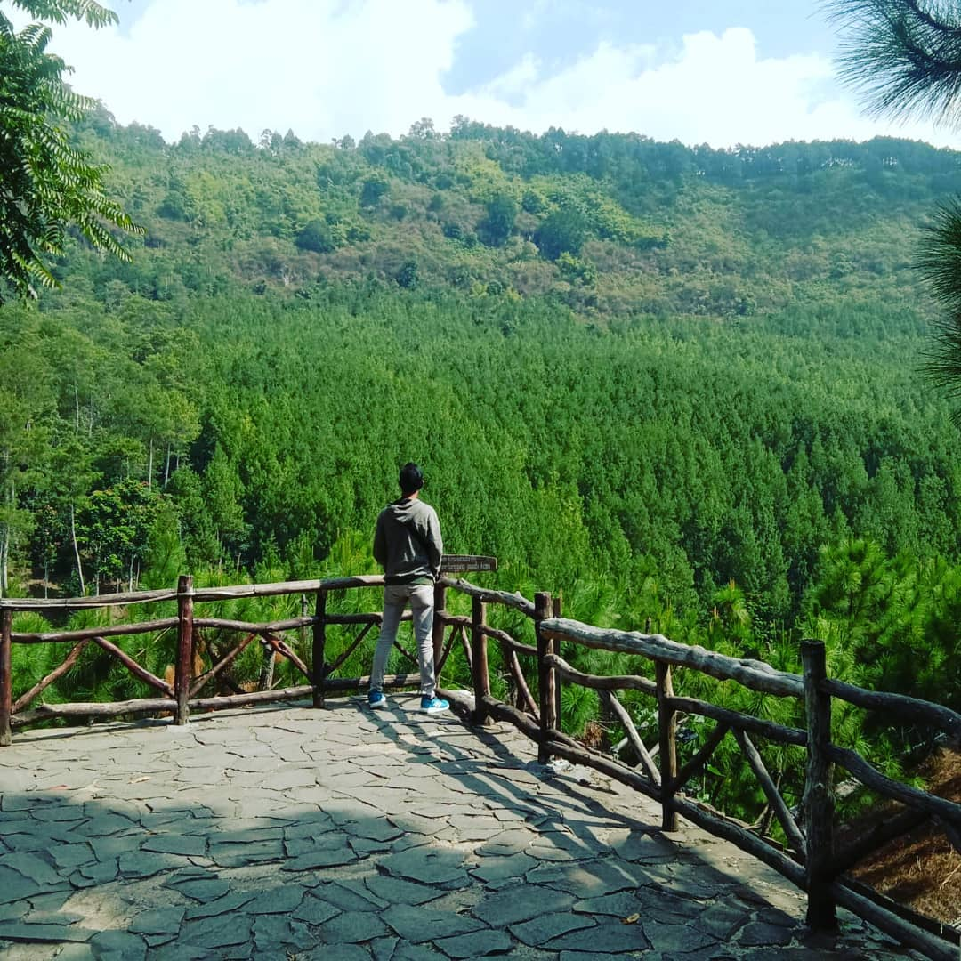 the lodge maribaya pine forest