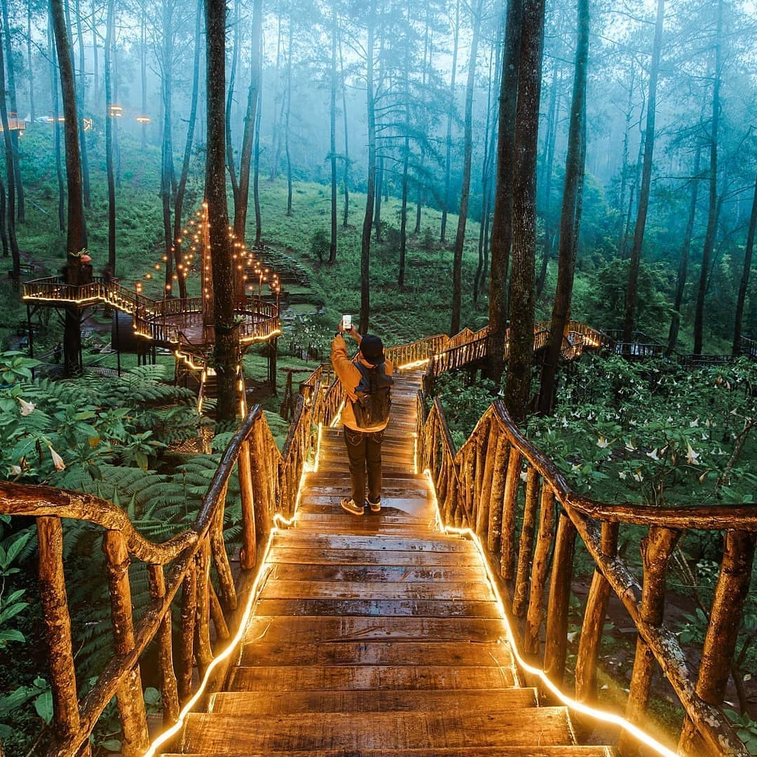 walkway orchid forest cikole